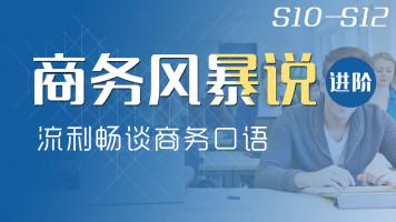 【三月大促】商务风暴说进阶 成人体系S10-S12【定制VIP】