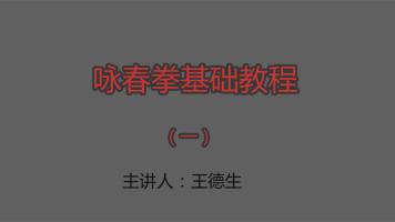 咏春拳基础入门