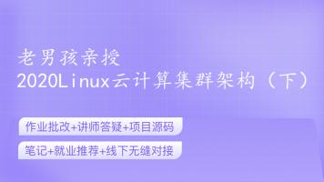 老男孩亲授:2020Linux云计算集群架构(下)