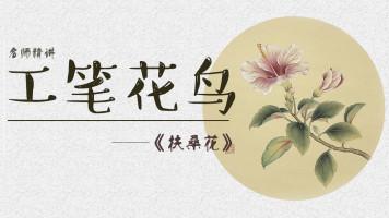 【视频】写意工笔花鸟/色彩素描山水基础篇