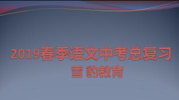 2019春季语文中考总复习【雪豹教育】