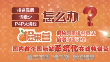 【点石成金】橙果营(阿里国际站系统化课程)
