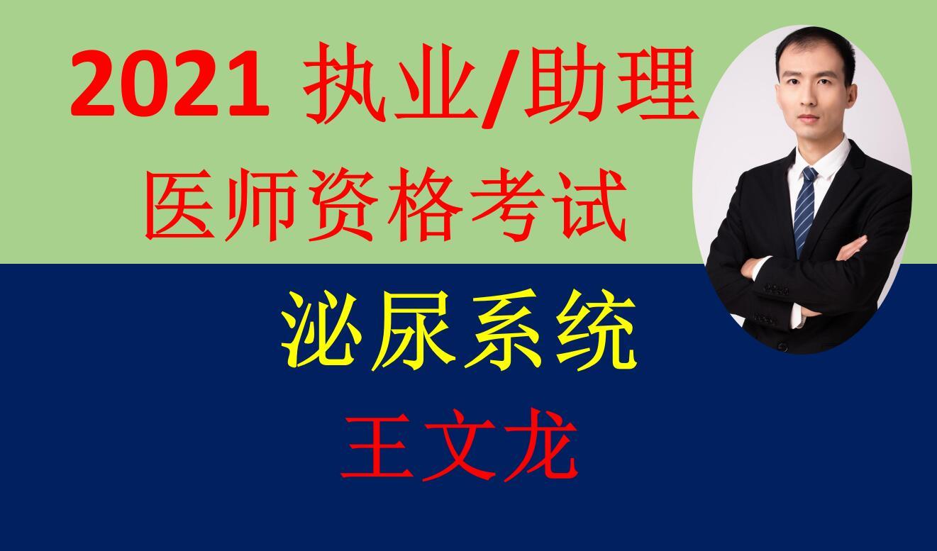 2021精诚医考王文龙-泌尿系统-执业医师/助理医师资格考试