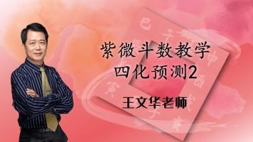 42王文华老师紫微斗数高级篇-四化预测2