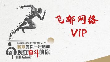 飞郁任鸟飞vip课程(2019)