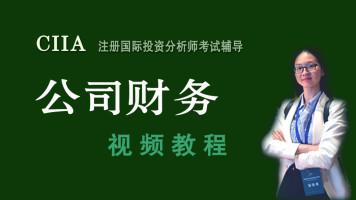 《红叔牛经》CIIA职业培训【公司财务】