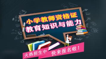 教育知识与能力(小学教师资格证笔试)