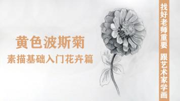 素描基础入门花卉篇黄色波斯菊