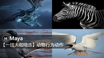 Maya【一技大咖精选】动物行为动作