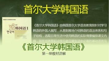 首尔大学韩国语(30课正文精讲)思密达韩语网校韩语乐乐老师