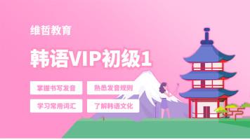 维哲韩语VIP系统班初级1