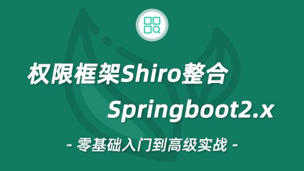 20年Shiro视频教程Springboot教程整合Shiro 权限教程 微服务