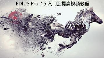 EDIUS Pro 7.5 入门到提高视频教程