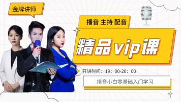 VIP2播音主持人|普通话基础|声音声优美化|朗诵主持配音