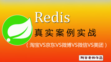 Redis与SpringBoot一线互联网实战⑤
