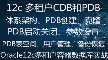 Oracle 12c多租户CDB和PDB容器数据库实战视频教程