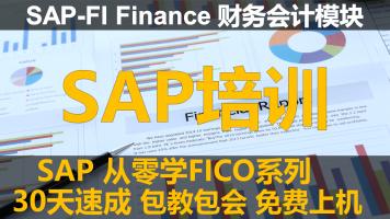 SAP FICO实施顾问培训-零基础30天速成课程