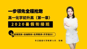 【张梅化学】高一化学2020初升高暑假衔接班必修一【第一章】预习