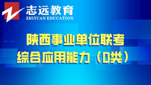 2019年综合应用能力(D类)——陕西事业单位联考