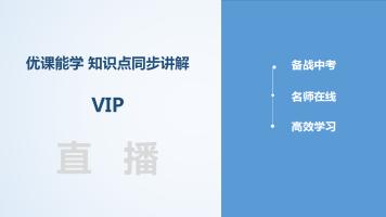 初中lwj-化学-寒假VIP