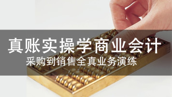 真账实操学商业会计【云财网校】
