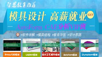 AutoForm 完整实例详细讲解CAE分析全过程VIP班【智恩教育】五金