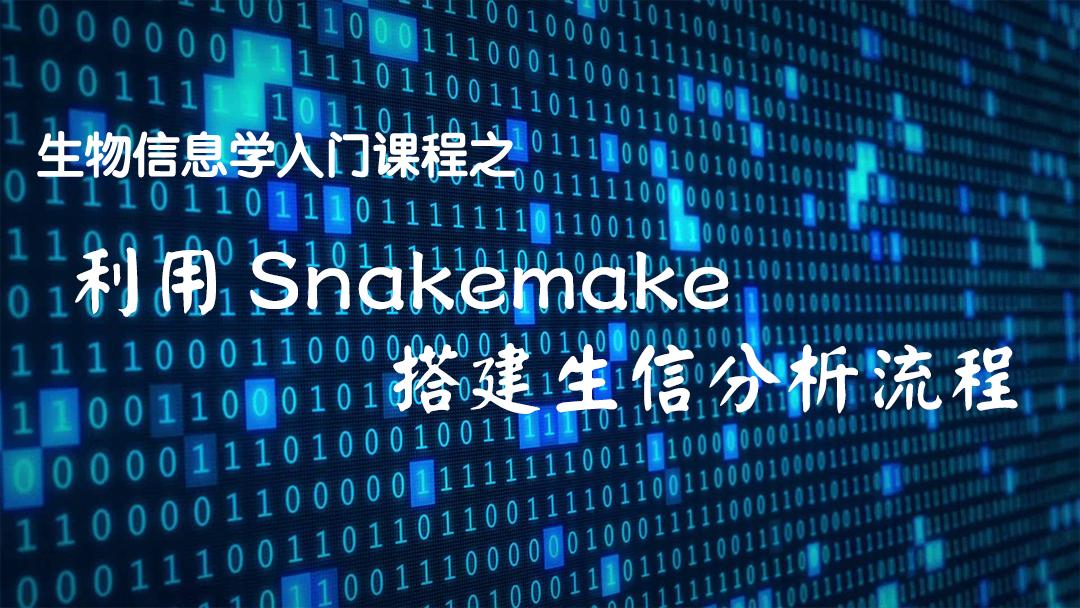 生物信息入门课程:利用Snakemake搭建生信自动分析流程