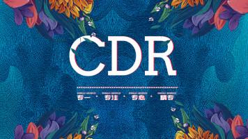 CorelDRAW 软件系统培训课CDR工作实战 即学即用