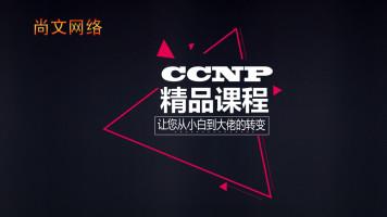 CCNP精品课程实战班-三个月从零基础到大牛