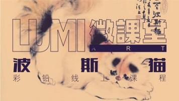 彩铅波斯猫