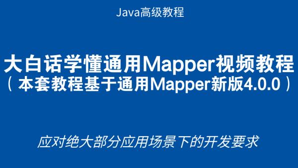 大白话学懂通用Mapper视频教程