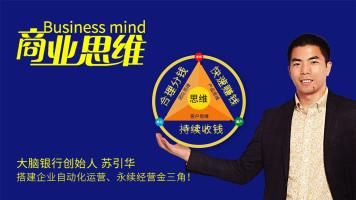 苏引华:商业思维