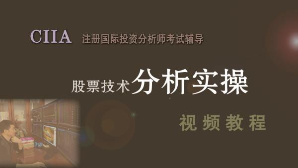 CIIA实操【注册国际投资分析师】