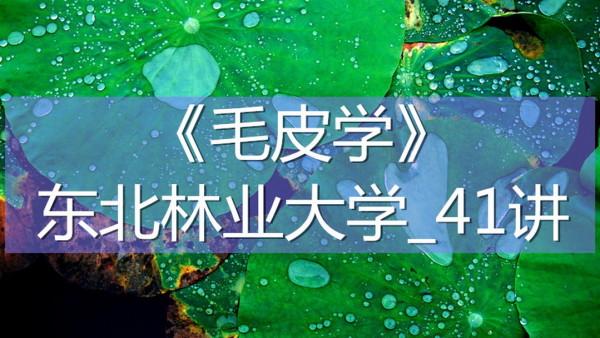 K7378_《毛皮学》_东北林业大学_41讲