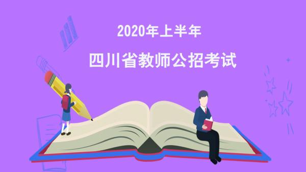 2020年四川省教师公招考试教育学精讲