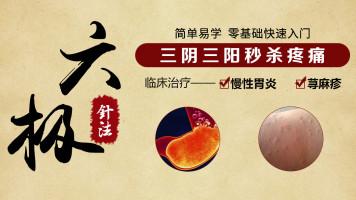 中医针灸培训-六极针法治疗慢性胃炎、荨麻疹