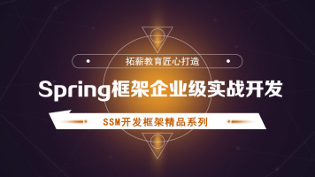 spring框架企业级实战开发 全套视频教程
