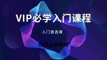 VIP入门500元课程