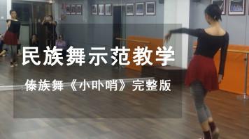 傣族舞《小卟哨》示范教学完整版
