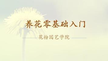 养花零基础入门【花粉园艺学院】(花店、盆景、植物设计)