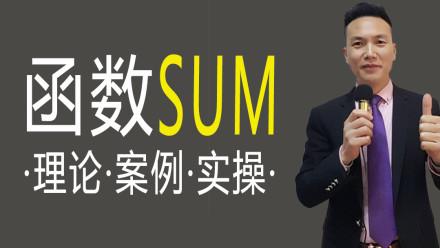 函数SUM理论 案例 实操