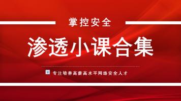 掌控安全小课合集/kali/黑客信息安全/网络安全/渗透/linux/ctf