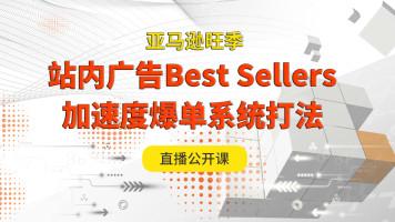 亚马逊旺季广告Best Sellers加速度爆单系统打法公开课