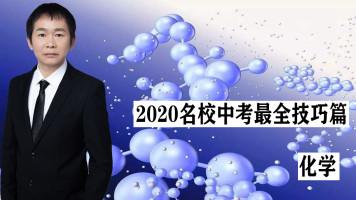 2020中考化学初中化学酸碱盐九年级化学初三化学中考化学复习