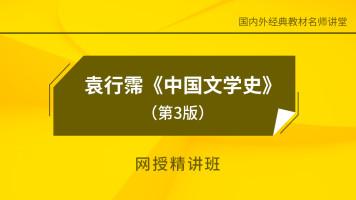 袁行霈《中国古代文学史》(第3版)第三卷网授精讲班