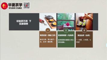 茶艺(师)培训课程—初级茶艺教程试学视频(下)续