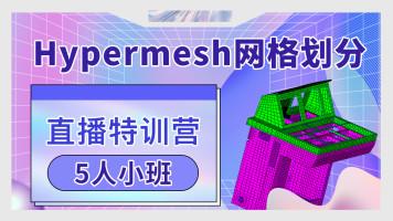 Hypermesh网格划分5人小班直播特训营