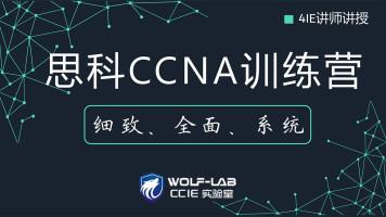 5IE讲师,WOLF实验室CCNA训练营-为零基础、初学者打造-经典课程