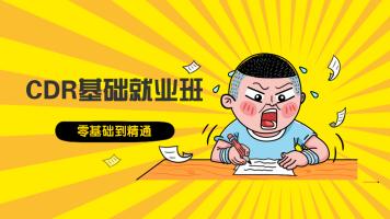 【20收费】CDR2020技术服务咨询