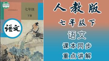 人教版初中语文七年级(下册)同步教学